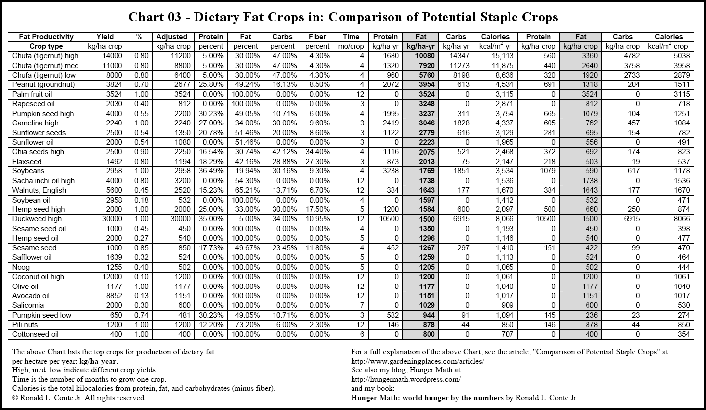 photograph about Printable Food Calorie Chart Pdf identified as Gardening, Vitamins and minerals, and Foods Storage Content